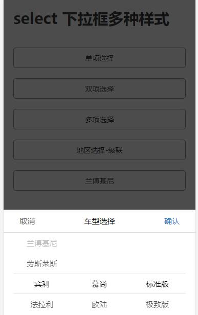 手机端 select 多样式联动选项框
